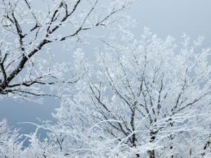 クリックすると拡大できます→◎御在所岳の雪景色Ⅱ