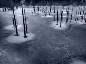 クリックすると拡大できます→◎凍結の湖