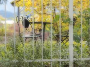 クリックすると拡大できます→◎秋色漂うイングリッシュ庭園