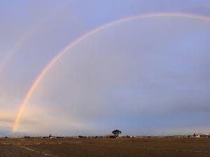 クリックすると拡大できます→◎ついに撮った、二重虹